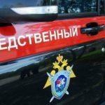 СК завёл уголовное дело по факту убийства фашистами мирных жителей в Ленинградской области