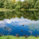 В Киргизии запустили онлайн-флешмоб произведений о российской природе