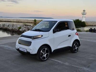 Власти не дадут денег на запуск российского электромобиля Zetta