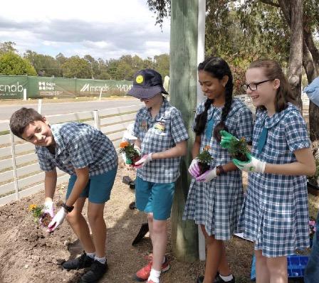 Соотечественники из Австралии посадили деревья в память о погибших солдатах