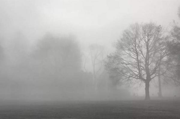 В пятницу в Латвии будет дождливо и туманно