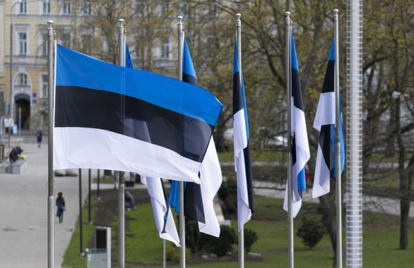 Эстония проведет саммит Трех морей. Правда, виртуальный