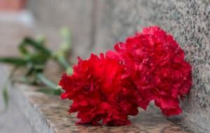 188 жертв фашистов найдены в бывшем концлагере Моглино