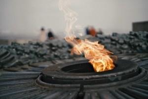 Свыше полутысячи останков обнаружены под Смоленском
