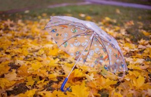 В ближайшие дни в Эстонии ожидаются дожди с прояснениями
