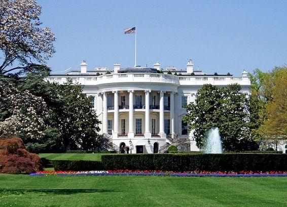 Соотечественники в США рассказали о ходе президентских выборов