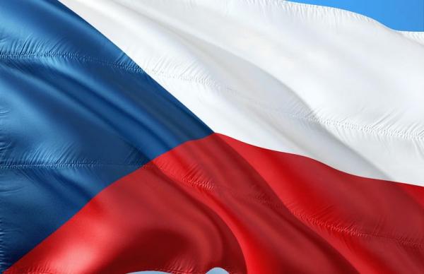 Эстония выделит Чехии 50 тыс. евро на борьбу с коронавирусом