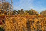 Синоптики раскрыли прогноз погоды на среду в Латвии