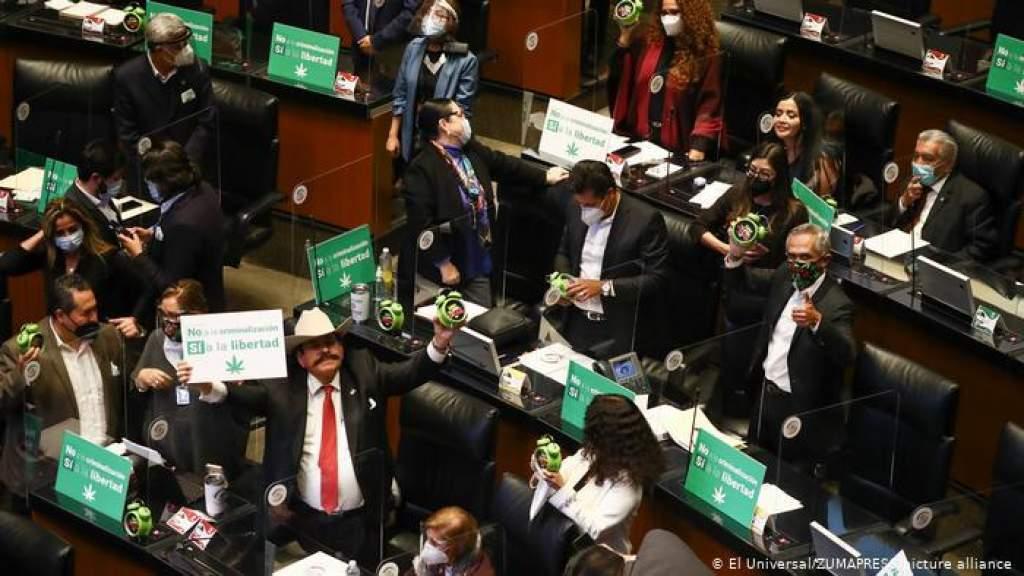 Парламент Мексики сделал первый шаг к легализации каннабиса