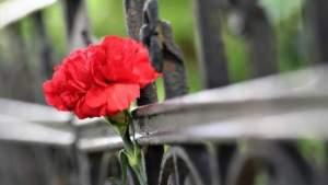 Под Севастополем обнаружены останки советских граждан, убитых гитлеровцами