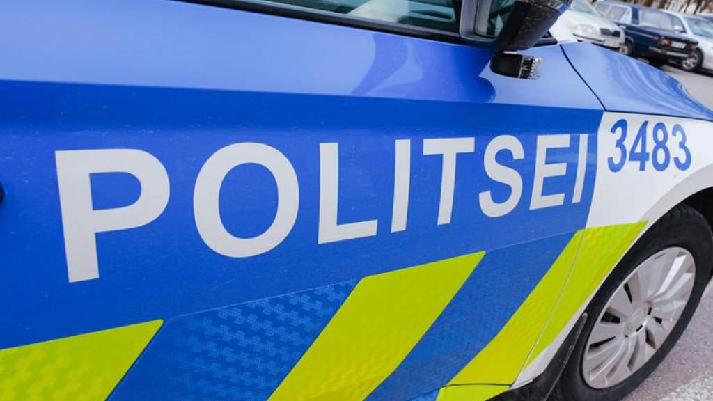 Наезд на полицейских в Ласнамяэ: виновника осудили на 10 лет