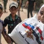 «С любовью из России»: в Сирию поступит 495 тонн продуктов