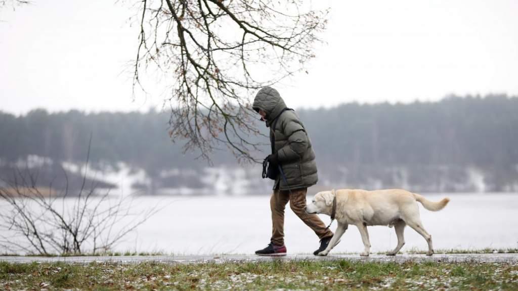 Синоптики рассказали о погоде на пятницу в Латвии