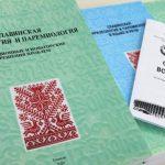 «Славянские встречи»: учёные из семи стран обсуждают в Гомеле языки и наследие славян