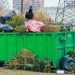 В этом году власти Тарту отказались от огненного шоу из старых новогодних елок