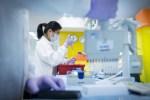 Эстония определится с целевой группой, которая будет вакцинирована AstraZeneca в течение недели