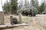 Силы обороны заявили о частичной отмене сборов резервистов в первом полугодии