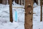 В Эстонии добавилось 412 новых случаев заражения коронавирусом, умерли шесть человек