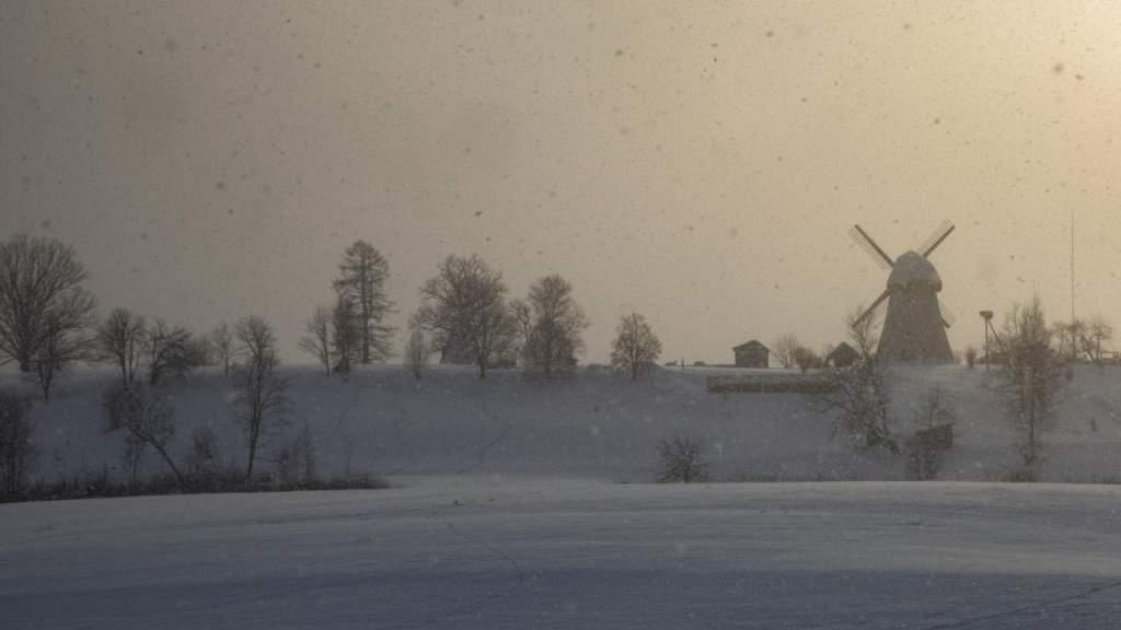 На следующей неделе прогнозируются большие колебания температуры