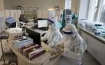В Эстонии за сутки выявили 1542 новых случая заражения коронавирусом