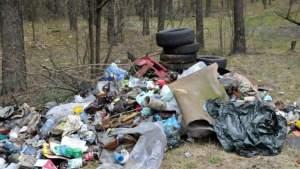 Рижан призывают в свободное время идти чистить лес