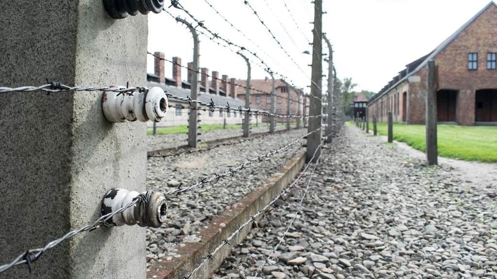 «Волонтёры Победы» провели международную встречу ко Дню освобождения узников концлагерей
