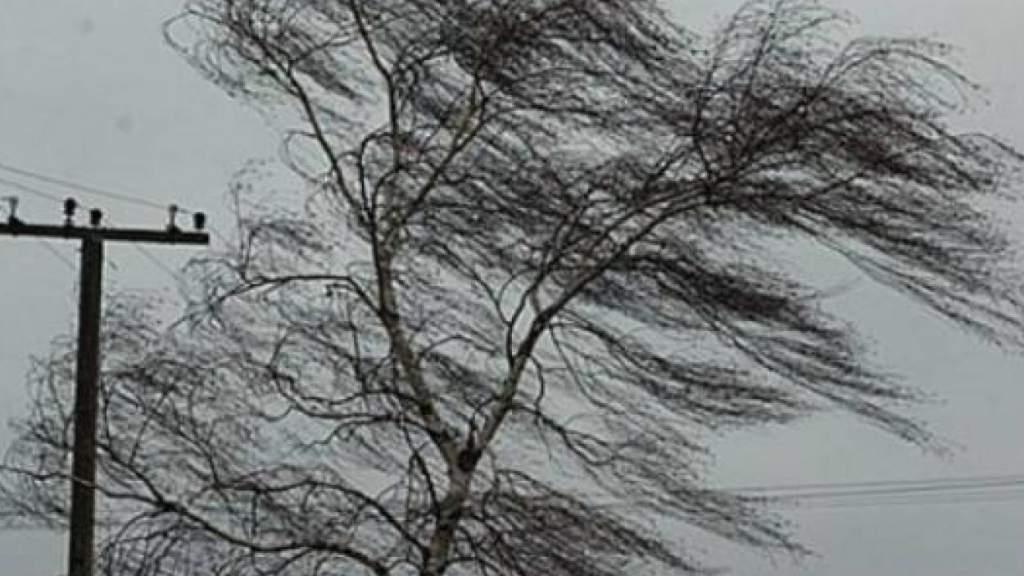 ГПСС после сильного ветра просит проверить - есть ли увас еще крыша