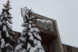 """Cei trei """"diavolași"""", ninși în plete."""