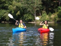 Half Price Paddleboard or Kayak Rentals