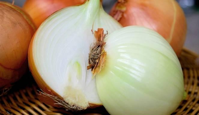 cara menumbuhkan kumis dengan bawang bombay