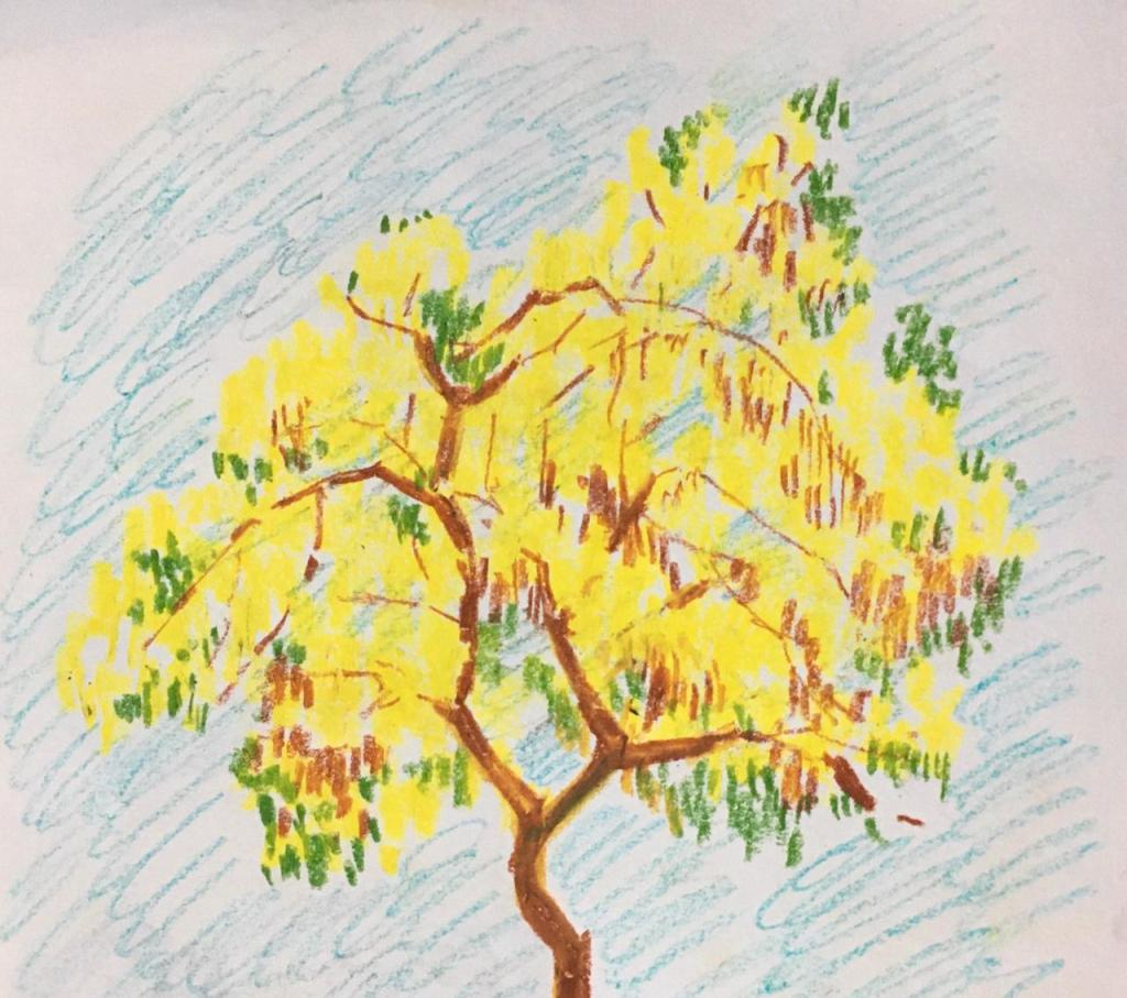 Amaltas tree by Sneha Biswas for a children's story by Shashwata Ganguly for Bama Patrika.