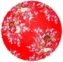 Djeco Umbrella's & Paper Lanterns