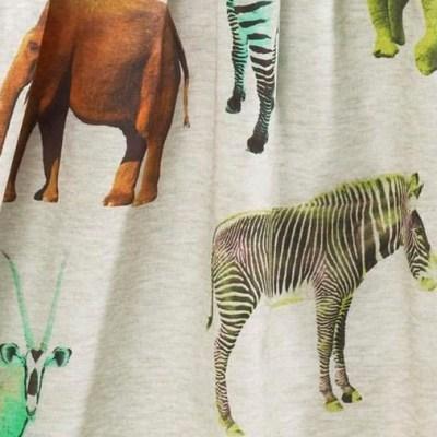 Hot on the high street: Next bright safari dress