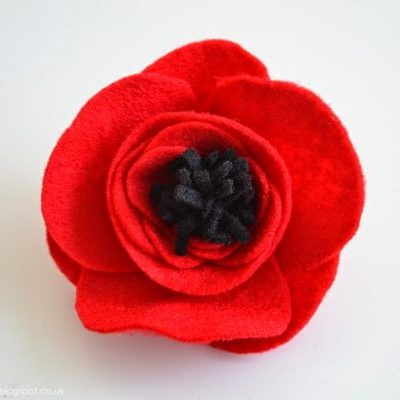 5 easy but brilliant Remembrance Day crafts