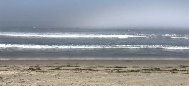 Pacific Ocean sea coast