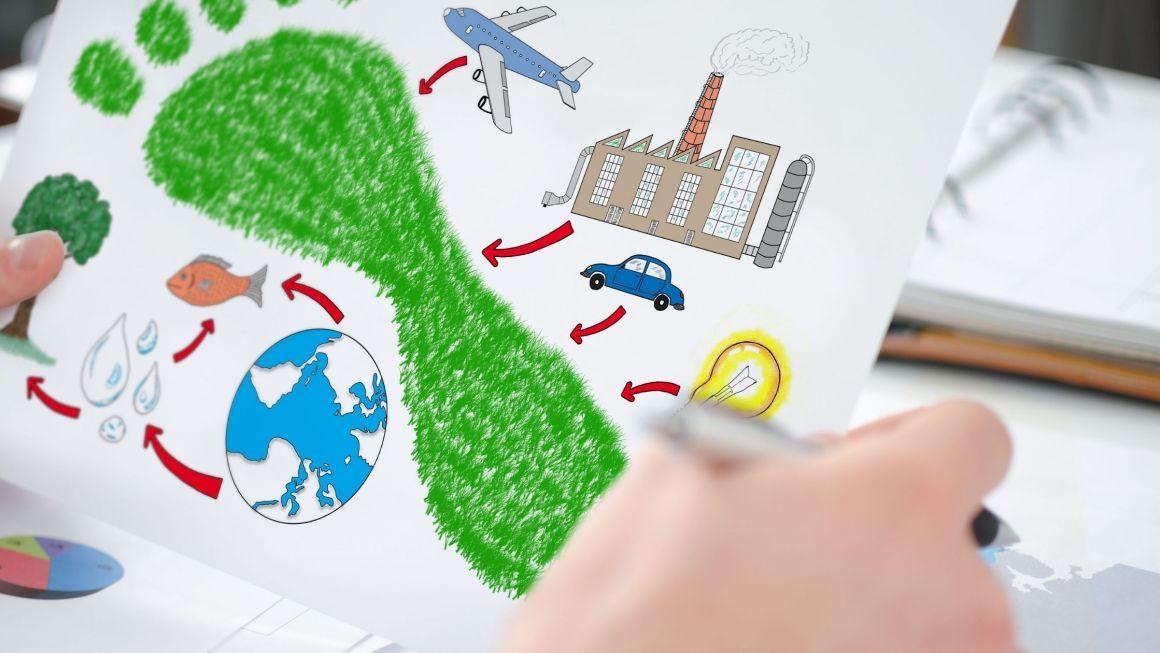 calcolare la carbon footprint
