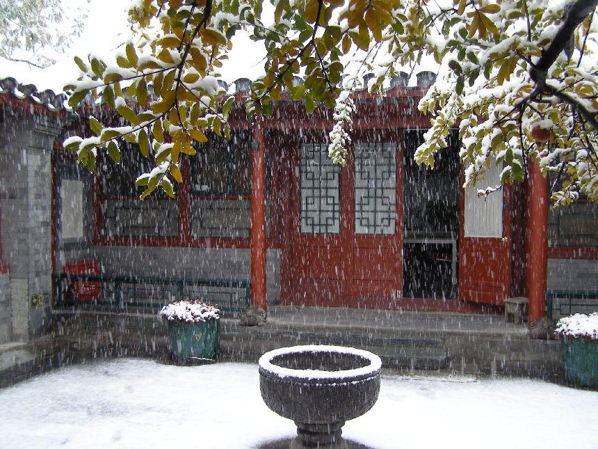 Heizungsgrenze: Winter in Peking. Seltener Schneefall hat 2009 die Stadt verwandelt. Da es Anfang NOvember ist, wird noch nicht geheizt