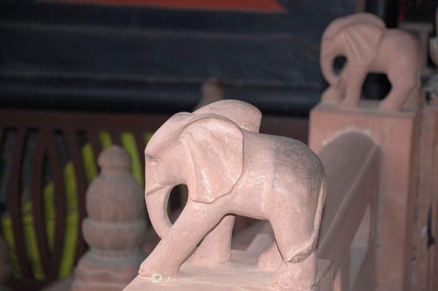 Am Emeishan dreht sich alles um Elefanten.