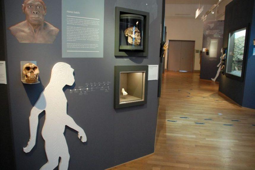 MenschenWelten im Landesmuseum Hannover
