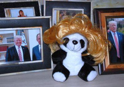 Panda mit Toupet