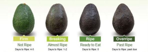 tell if avocado is ripe