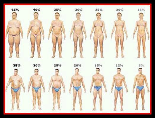 Consider, what Same weight different body fat