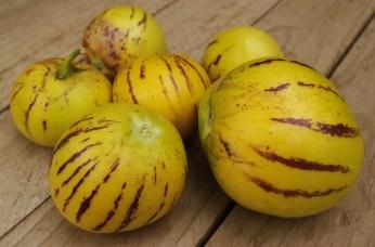 pera-melon