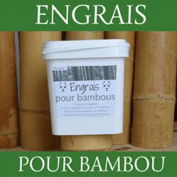 Engrais bambou