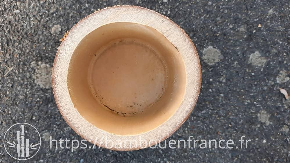 Diaphragme intérieur du bambou
