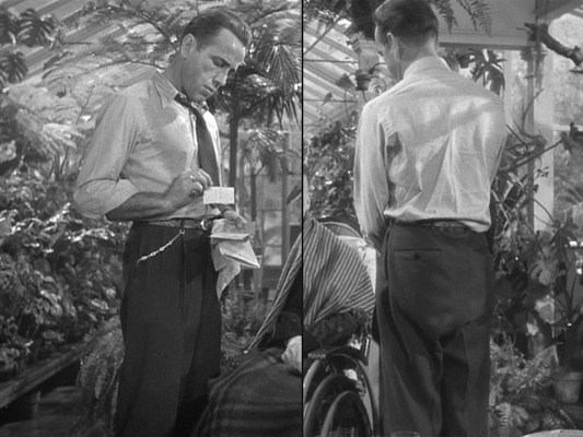 Marlowe was wise to remove his jacket in the tropical atmosphere cultivated by General Sternwood.