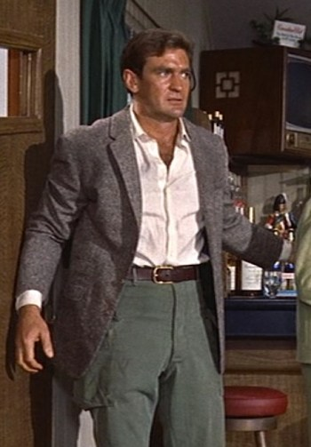 Rod Taylor as Mitch Brenner in The Birds (1963).