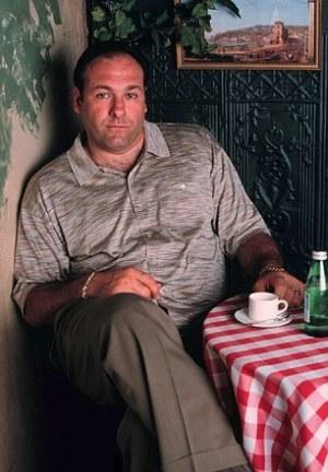 "James Gandolfini as Tony Soprano on The Sopranos (Episode 1.06: ""Pax Soprana"")"