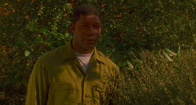 Raymond's green shirt camouflages him among her shrubbery. At this point, he's essentially visible only to her, and she's safe to continue their association. By joining him outside this area for which he is able to hide, she puts them both at risk.