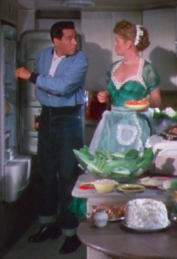 Desi Arnaz and Lucille Ball in The Long, Long Trailer (1954)